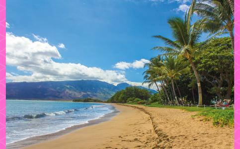 Go High and go to Hawaii