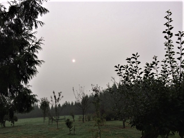 Smoky Skies from US Wildfires cover Cloverdale, BC on September 14, 2020