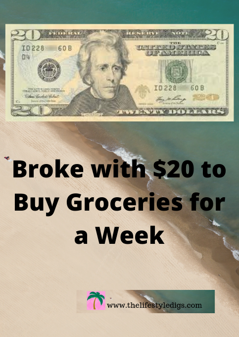 Broke with $20 to Buy Groceries for a Week