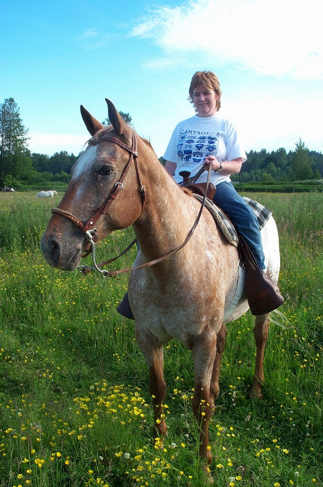 9 Myths about Horseback Riding