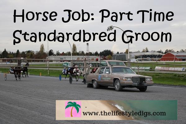Horse Job: Part Time Standardbred Groom