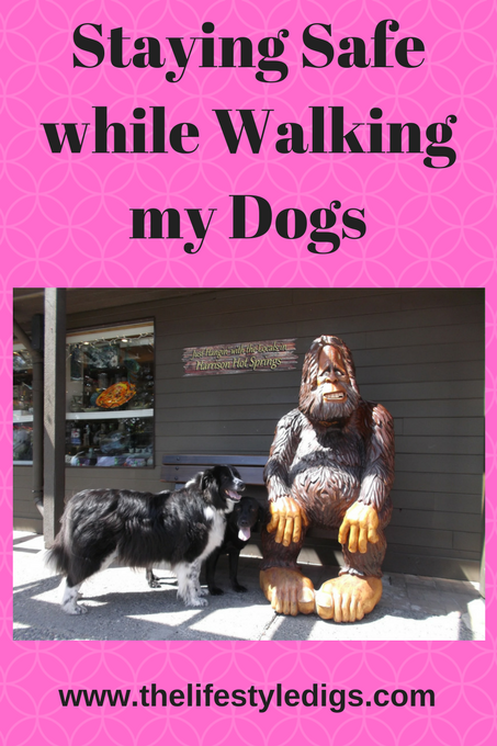 Staying Safe while Walking my Dogs