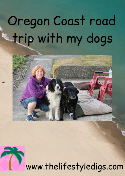 Oregon Coast road trip with my dogs
