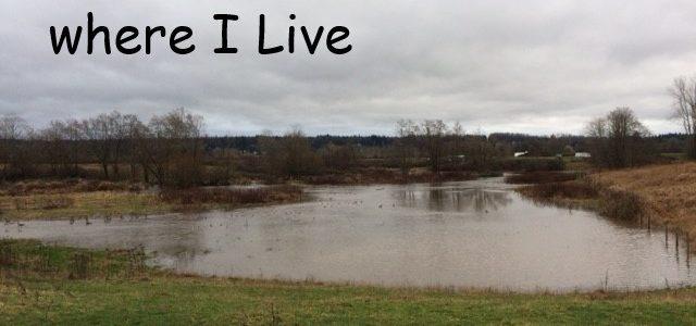 Too much Rain where I Live