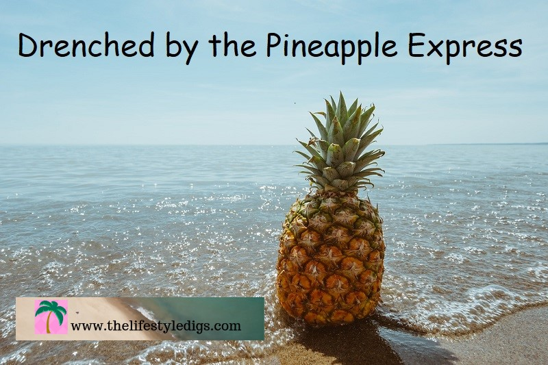 Drenched by the Pineapple Express
