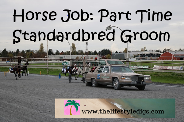 Horse Job: Part Time Standardbred Groom
