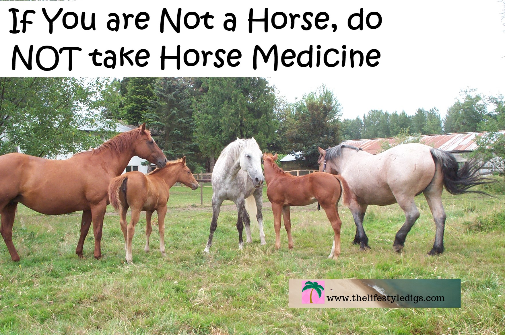 If You are Not a Horse, do NOT take Horse Medicine