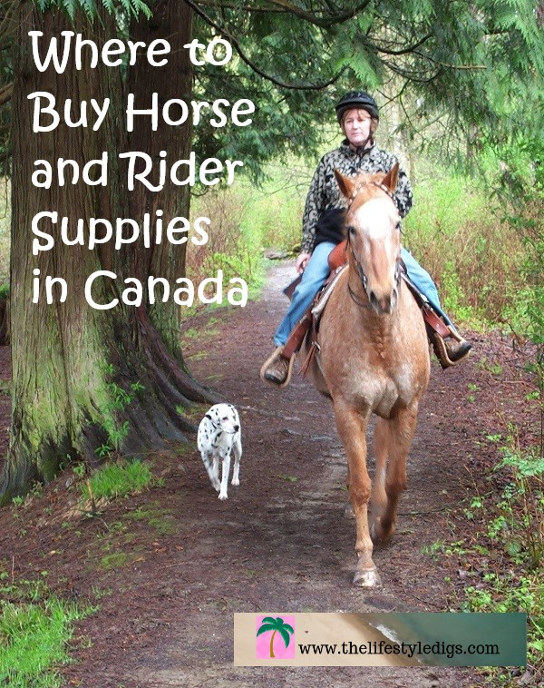 Where to Buy Horse and Rider Supplies in Canada