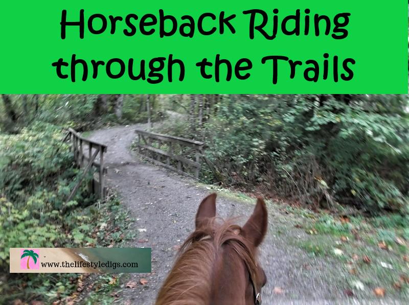 Horseback Riding through the Trails