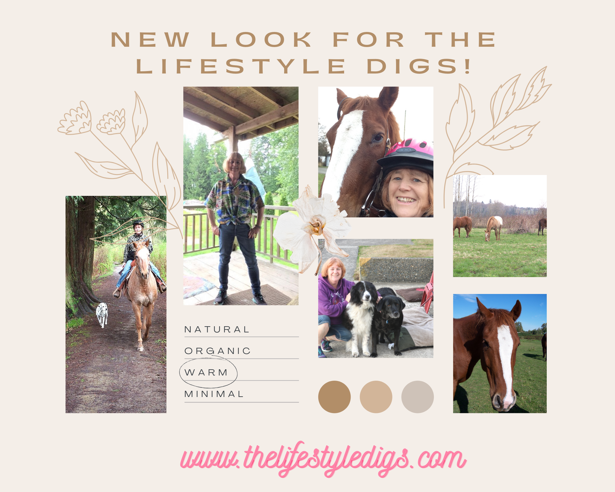 New Look for The Lifestyle Digs!